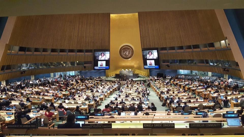 2017-06-14 UN Special Needs 01